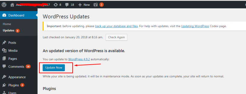 Link untuk Update WordPress