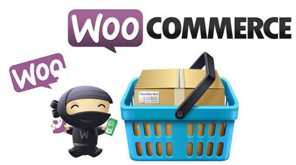 Mengelola WooCommerce – Cara Mengatur Pemesanan, Kupon dan Laporan di WooCommerce Icon